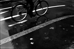 Roue libre (Rachelnazou) Tags: caffenol blackwhite minolta film ilford analog argentique