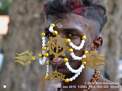 2009-02a Thaipusam Penang 2018 (83) (Matt Hahnewald) Tags: matthahnewaldphotography facingtheworld skewer hook skin piercing pearls string pin cheek tongue faith kavadiattam pain character head face eyes ear screw phillips helix hairstyle consent travel culture tradition custom religion penance repentance anthropology ethnic hindu hinduism thaipusam festival roadside celebration devotee georgetown penang malaysia malaysianindian tamil oneperson male adult young man image photo faceperception physiognomy nikond3100 primelens 50mm 4x3 horizontal street portrait closeup headshot sidewaysglance outdoor color authentic vel mankind twothirdview nikkorafs50mmf18g lookingcamera expression