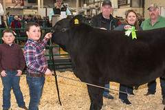 2018 Easter Beef Show and Sale (Government of Prince Edward Island) Tags: easter beef show sale easterbeef steers heifer agriculture livestock