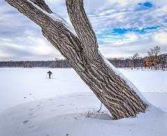 Wintry Crossing (Wes Iversen) Tags: brighton kensingtonmetropark michigan milford nikkor24120mm clouds lakes men people ski skiers skiing sky snow trees winter