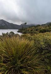 Cradle Mountain (bronwyn_d) Tags: tasmania cradlemountain mountain rainforest australia dovelake