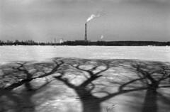 1212_14_1000x700 (Photokava) Tags: analog film slide adox silvermax iso100 bw blackandwhite nikon roman savitskyi ukraine kyiv