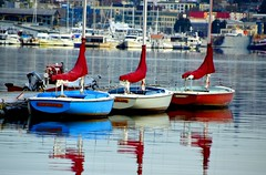 #90/118 - Red, white and blue - 118 Pictures in 2018 (Krasivaya Liza) Tags: seattle wa washington state lakeunion lake union downtown centerforoldboats boat boats boatmaking pier centerforwoodenboats wooden southlakeunionpark southlakeunion park 90 90118 red white blue redwhiteblue 118picturesin2018 fremont old