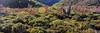 Peloponnese (Giovanni C.) Tags: escan01279 film panoramic greece analog fuji panorama pano 6x17 617 wide ultrawide analogue g617 landscape mediumformat mf nohdr nature gcap giovannic hellas griechenland ελλάσ ελλάδα grecia europe scenic saveearth filmisnotdead lovefilm 120 220 v700 epson scanner scanning fujica fujifilm 160ns negative