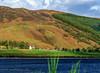 Farm beside the loch. - Loch Lochy, Scotland (Paul Diming) Tags: lochlochy a82 highland landscape 2012natureconservancy photocontesttnc12 greatbritain pauldiming loch lake fall uk scotland