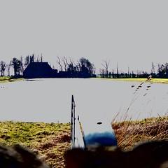 P1010241 (CloudBuster) Tags: meadow weilanden groen green countryside platteland friesland water open view uitzicht farms boederijen shadows schaduwen black white zwart wit