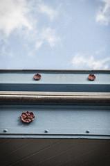 Les Halles de Millau (nkpl) Tags: millau halles reflet reflection réflexion reflect bleu blue ciel nuage sky cloud detail détail dehors extérieur outside outdoor rouge red lignes lines lumièrenaturelle naturallight architecture jour