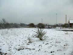 Mini beast from the east (auroradawn61) Tags: snow weather hamworthy poole dorset uk england march 2018 lumixtz25 minibeastfromtheeast beastfromtheeast2 uksnow snowinmyneighbourhood port wasteland