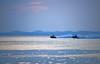DSC_0058a (lightmeister) Tags: malaysia mersing island sand sea pulau besar