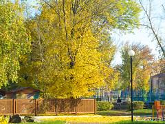 Autumn park (BVR_Photo) Tags: autumn park