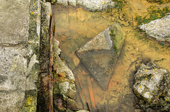 Berry Head (Richgt1) Tags: abstract rockpool