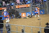 IMG_1649 (melodavis@sbcglobal.net) Tags: rodeohouston 2018 rodeo livestock heifer farmlife steer saddlebronc bronc bull bullriding calfscramble alpaca
