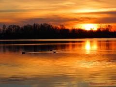 Coucher de soleil sur le lac.... (Ezzo33) Tags: france gironde nouvelleaquitaine bordeaux ezzo33 nammour ezzat sony rx10m3 ville paysage lac coucher soleil orange sky sunset