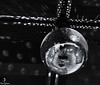 Disco Ball (Thad Zajdowicz) Tags: zajdowicz palmsprings california usa travel canon eos 5d3 5dmarkiii dslr digital lightroom availablelight ef24105mmf4lisusm blackandwhite bw monochrome black white light shadow reflections discoball abstract shape circlerepeating repetition