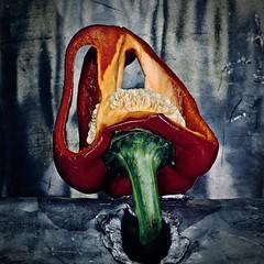 Transgression (Phancurio) Tags: pepper lead photography violation voyeurism