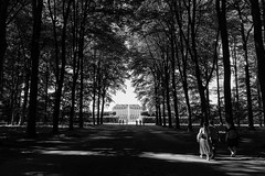 Constructed tranquility (gambajo) Tags: brühl 1year1town1lens blackandwhite blackwhite black white people street streetphotography park castle walk trees nature x100s fujix100s fujifilmx100s outdoors public old path mood moody sun sunlight shadows project