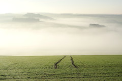 Bourgogne (philch6) Tags: france bourgogne burgundy hiver matin winter morning brume mist paysage landscape champs campagne countryside country french février february philch6 philippe charles ricoh pentax k3 フランス ブルゴーニュ ブルゴーニュ地域圏 冬 朝 風景 田舎 二月 2018年 2018 靄