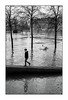 Paris (Punkrocker*) Tags: leica m5 summicron asph 35mm 352 film ilford pan 400 nb bwfp street city people tree river flow seine paris france