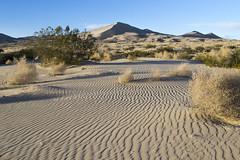 Mojave Desert, CA (Trasaterra) Tags: southwest arizona utah california grand canyon monument valley zionnp brycenp deathvalleynp mojavenp travelwithkids desert mountains travel