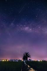 希望 (bdrc) Tags: 1116mm 2018 apsc a6000 alpha alphauniverse asdgraphy f28 field malaysia night paddy road sekinchan sky sony sonyalpha sonyimages sonyphotography stars tokina ultrawide milkyway galaxy space dark light pollution stacked travel shooting star purple landscape scenery