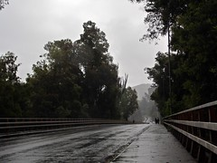 Lluvia en Talca. (Sebastian Ruminot B.) Tags: lluvia rain winter invierno rio claro talca puente sur