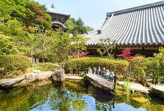 Daishō-in Temple ..Miyajima Island..Japon (geolis06) Tags: geolis06 asia asie japan japon 日本 2017 itsukushima miyajima daishōin temple bouddhisme buddhism religion island île buddha bouddha forêt forest misen mont montagne nature statue