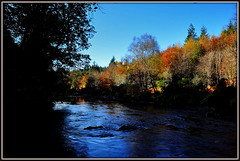 """ The Banks of Avonmore "" ("" P@tH Im@ges "") Tags: avonmoreriver autumn dad me dreams faraway journeys co wicklow home ireland talked claravale poem song oneverse misshim"