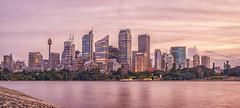 Sydney Skyline (Scottmh) Tags: 2016 sydney australia d7100 june nikon ratcliff trey winter skyline cityscape skyscraper sunset clouds water harbour sky city building sea