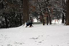 Alla ricerca di qualcosa. (BBIANCA18) Tags: parco ricerca persona neve nikond5200 milano