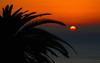 2018-02-14 (Giåm) Tags: gomera lagomera vallegranrey sunset coucherdesoleil solnedgång solnedgang atlantique océanatlantique atlantic atlanticocean océanoatlántico atlanten atlanterhavet canarias islascanarias lasislascanarias canaryislands canaries îlescanaries kanarieøerne kanarieöarna españa espagne spain spanien giåm guillaumebavière