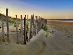 Virginia Beach dune fences...about 66th Street (Cooke Photo) Tags: virginia atlanticcoast sanddunes coastal beach seascape virginiabeach