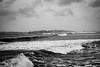 quinn 5 (Stefanie Timmermann) Tags: riely quinn noreaster damage winterstorm forceofnature