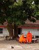 Monks in Laos (Andreas Mezger - Photography) Tags: rot monk monks street rural orange luang luangprabang asia asien traditional cats