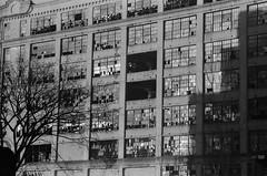 Abandoned Warehouse, Brooklyn (josephkrings) Tags: 1stavenue abandoned brooklyn greenwoodcemetery ilfordhp5 newyork nikkor28105mm13545 nikonn70 sunsetpark blackandwhite brokenglass warehouse