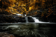Copper Glens (Ray Moloney Photography) Tags: ifttt 500px waterfall waterfalls orange red copper leaves trees long exposure rocks moss ireland tree nature clare limerick tipperary plants