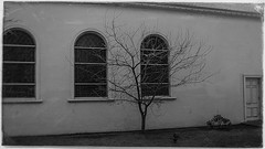 tempe 01014 (m.r. nelson) Tags: tempe arizona america southwest usa mrnelson marknelson markinaz streetphotography urban color blackwhite bw monochrome blackandwhite newtopographic urbanlandscape artphotography
