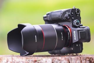 SONY ⍺7III  (ILCE-7M3) & Samyang AF 35mm ƒ/1.4 FE
