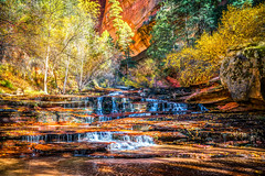 Zion NP Fine Art Photography! Archangel Falls on the Subway Hike Fall Foliage! High Res Zion National Park Fine Art Sony A7RII Elliot McGucken Fine Art Landscape & Nature Photography: Sharp Carl Zeiss Sony Vario-Tessar T* FE 16-35mm f/4 ZA OSS Lens (45SURF Hero's Odyssey Mythology Landscapes & Godde) Tags: the canyon np escalante staircase 45epic dr elliot mcgucken fine landscape nature photography north rim cape royale zion national park art sunset breaking storm archangel falls subway hike fall foliage high res