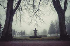 Graveyard on a misty day (A.Dissing) Tags: graveyard misty foggy silhuet silent white black art light dark contrast a7 a7ii a7m2 sony anders dissing masterpiece super detail fantastic good positive photo pixel mm creative beautiful color composition moment europe artistic other danish denmark danmark different exposure enjoy young unique weather scene awesome dope angle perfect perspective interesting rip cross
