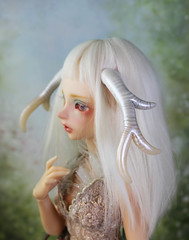 gone now, thanks! (Sparrow ♪) Tags: sd antlers minifee lucywen bjd horns white simple msd