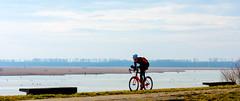 _DSC3110 (durr-architect) Tags: dike road almere lelystad oostvaardersplassen ijsselmeer lake markermeer ice water sea grass bike sky field
