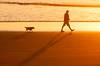 20180313_9840_1D3-200 And the dog follows behind (072/365) (johnstewartnz) Tags: canon eos canonapsh apsh 1dmarkiii 1d3 1dmark3 1d 1dmkiii 1dmk3 70200mm 70200 70200f28 newbrighton newzealand newbrightonbeach sunrise 072365 day072 day72 onephotoaday oneaday onephotoaday2018 365project project365