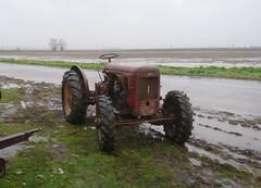 Same DA 25 B DT (samestorici) Tags: trattoredepoca oldtimertraktor tractorfarmvintage tracteurantique trattoristorici oldtractor veicolostorico da25 30 a