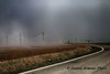 Spettacoli naturali (Gianni Armano) Tags: spettacolo naturale nebbia san giuliano nuovo alessandria piemonte italia foto gianni armano photo flickr