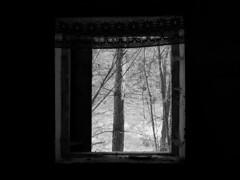 a place forgotten by the future (series, episode 3) (Neko! Neko! Neko!) Tags: blackandwhite blackwhite bw mono monochrome window past memories desolate forgotten nostalgia expression expressionism