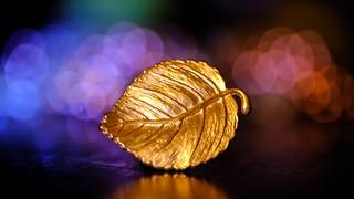 Gold Leaf HSS