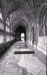 """Gloucester cathedral cloisters <a style=""""margin-left:10px; font-size:0.8em;"""" href=""""http://www.flickr.com/photos/69278269@N06/40882200921/"""" target=""""_blank"""">@flickr</a>"""