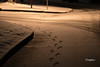 FootprintsInSnow (FischyBizness Photography) Tags: snow snowcovered snowstorm snowfall streets streetlamp footprints moody nature peaceful
