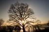 琵琶湖・湖北24・Lake Biwa (anglo10) Tags: 長浜市 滋賀県 japan lake 湖 琵琶湖 夕景 sunset