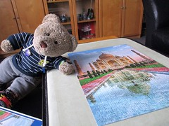 Cool refleckshuns! (pefkosmad) Tags: jigsaw puzzle leisure hobby pastime trefl complete used secondhand tajmahal building architecture india reflections view photograph photo tedricstudmuffin teddy ted bear animal toy cute cuddly stuffed soft plush fluffy